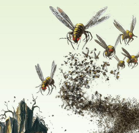 insect-bee-swarm.png